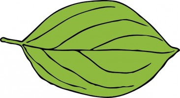 Leaf clip art free vector in open office drawing svg svg