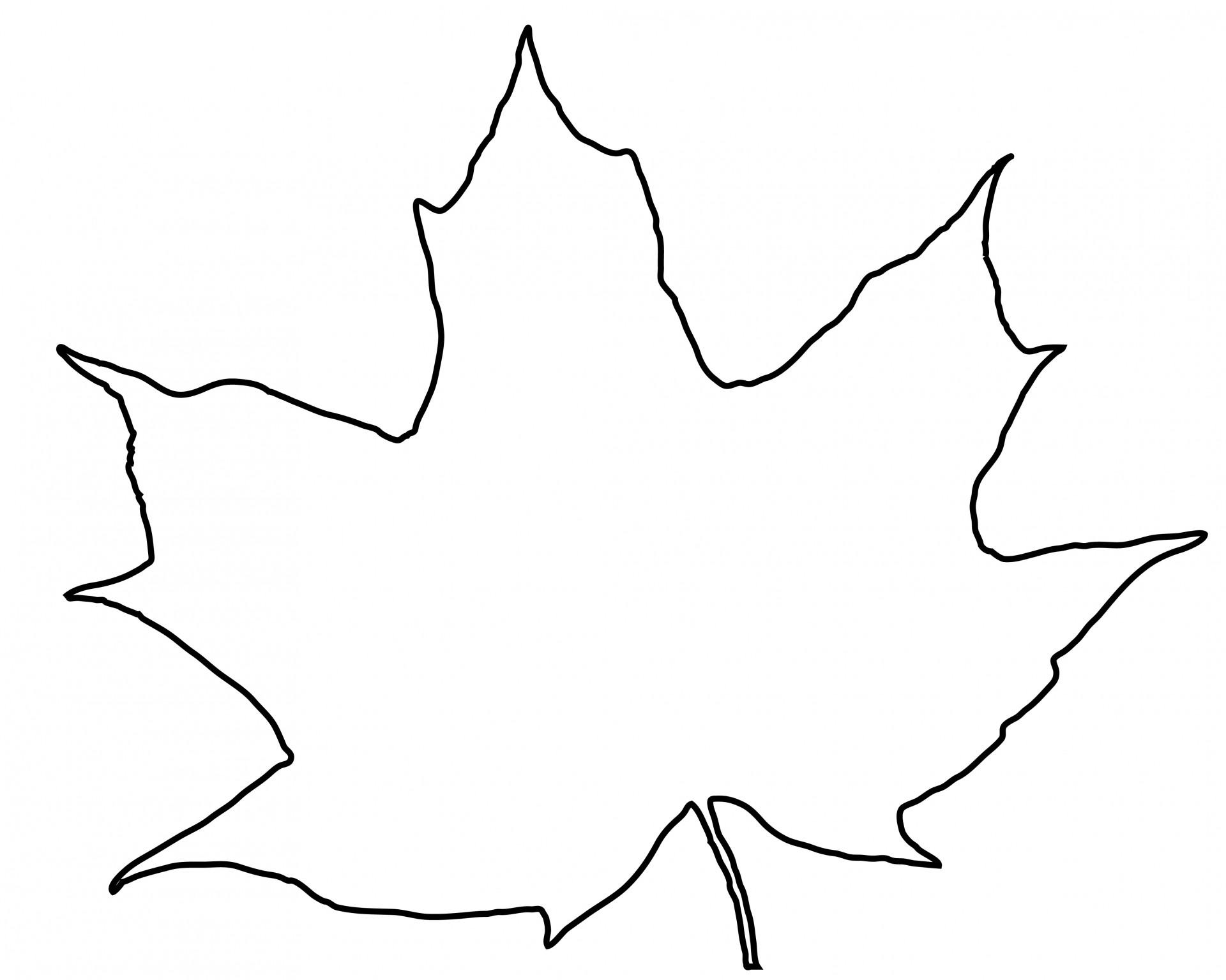 1920x1536 Leaf Outline Free S - Leaf Outline Images