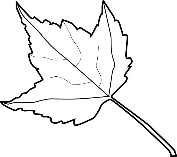 Leaf outline 2 clip art