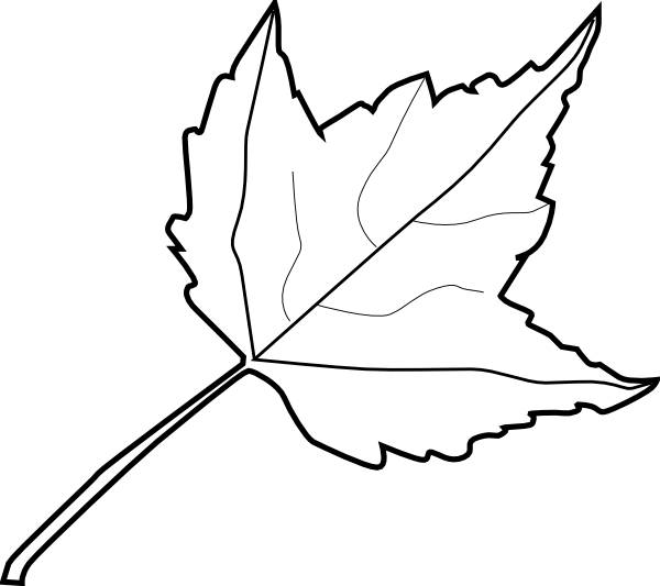Leaf Outline #8639