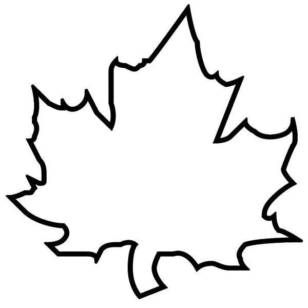 Maple Autumn Leaf Outline Col - Leaf Outline Images