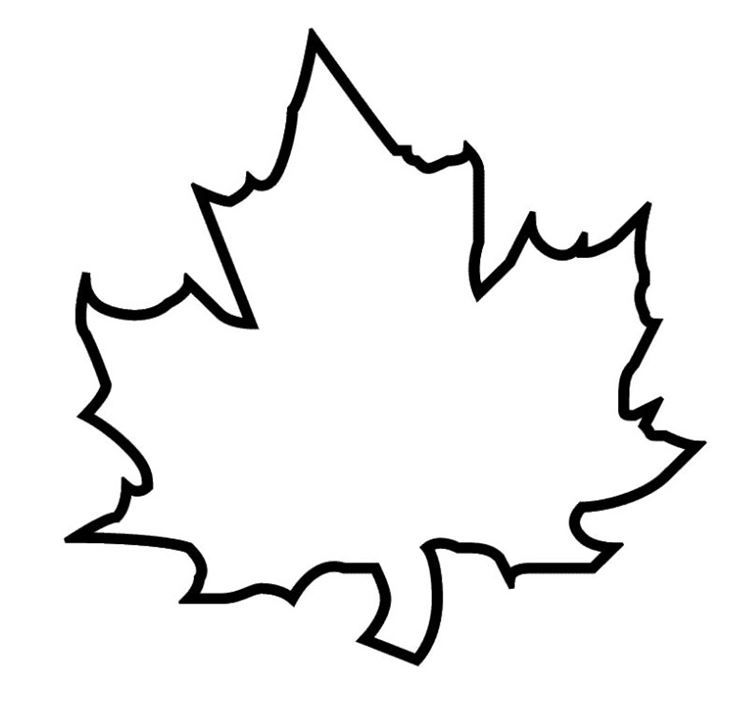 Maple Leaf Outline Clipart 3