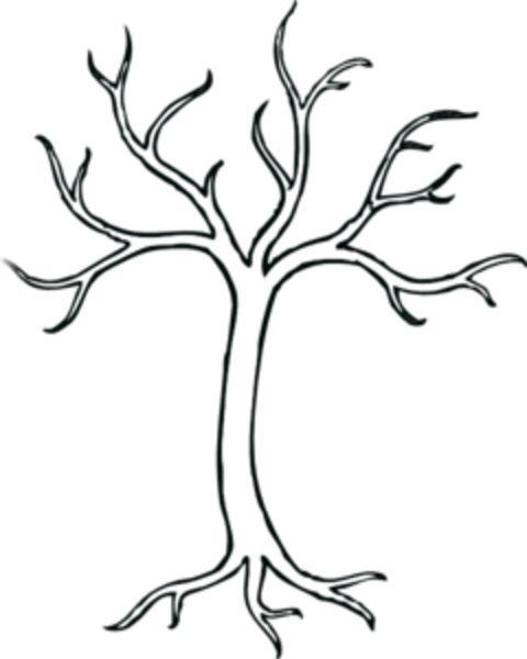 leafless tree drawings   clip art