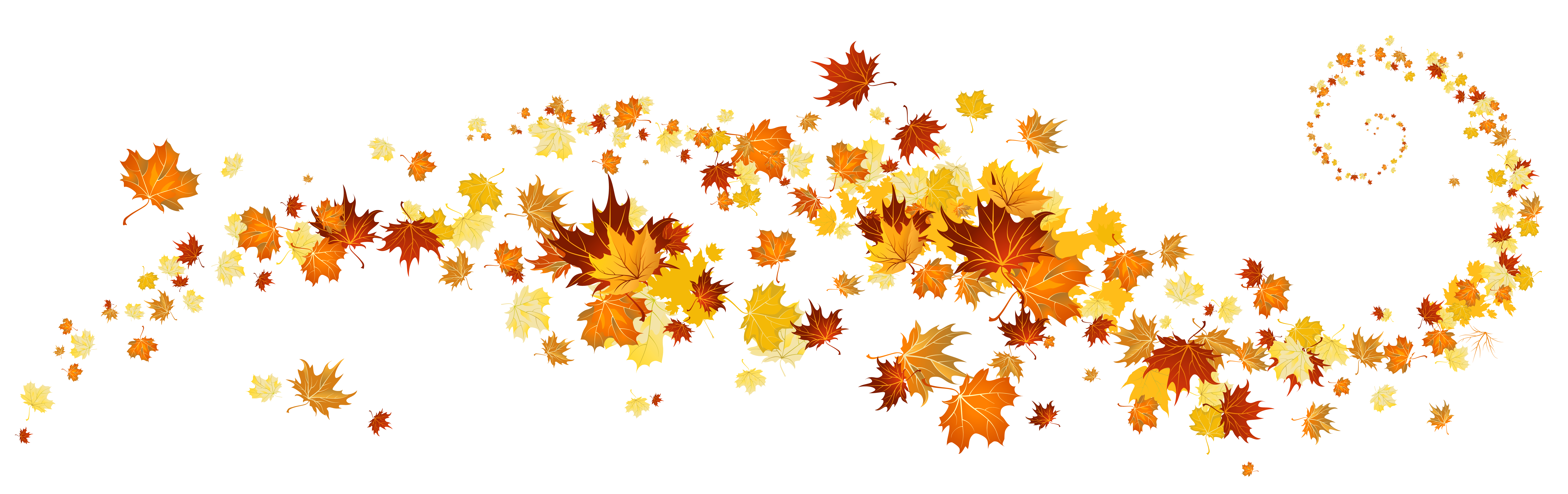 leaves fall leaf clip art .