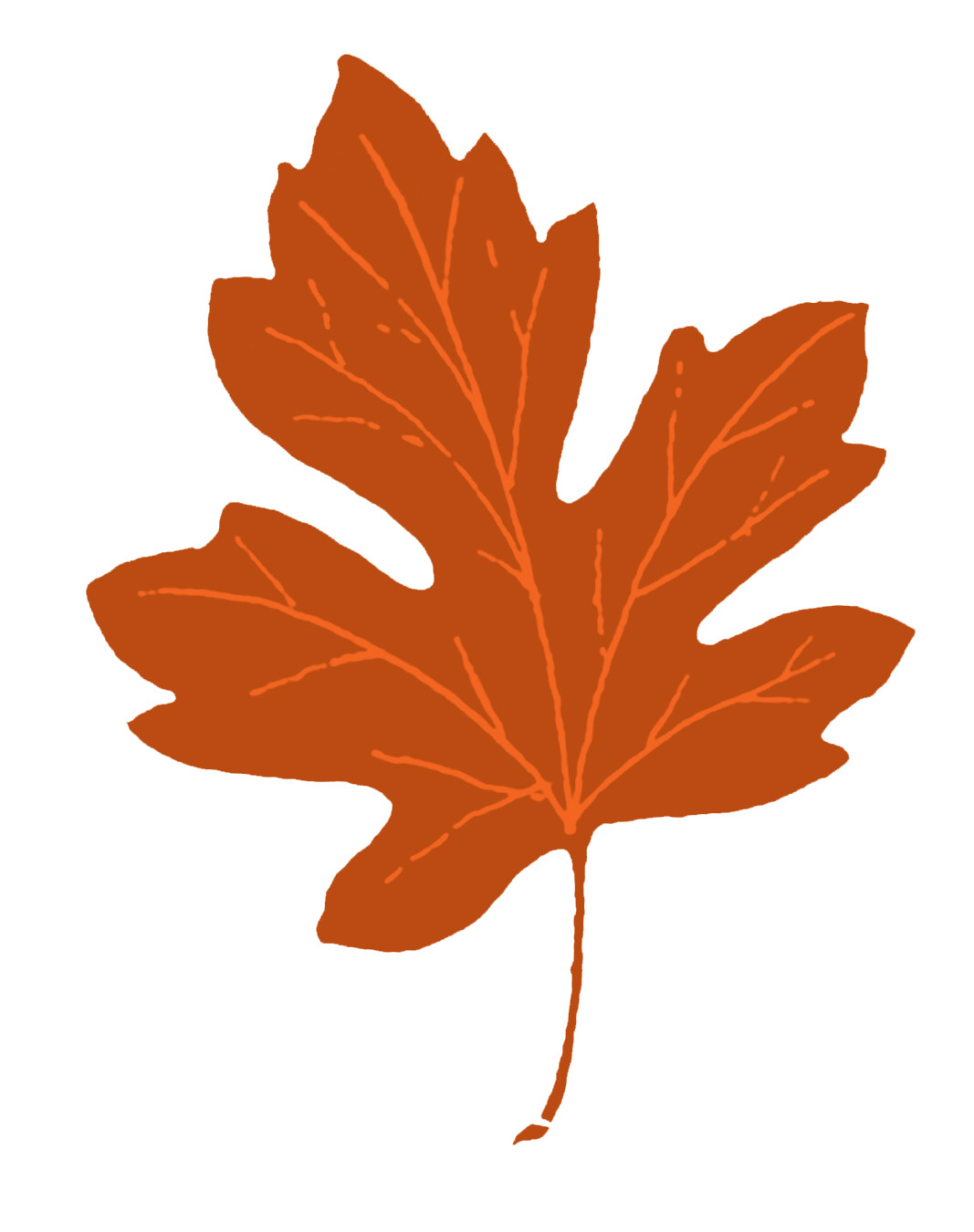 Leaves leaf clipart clipart cliparts for you