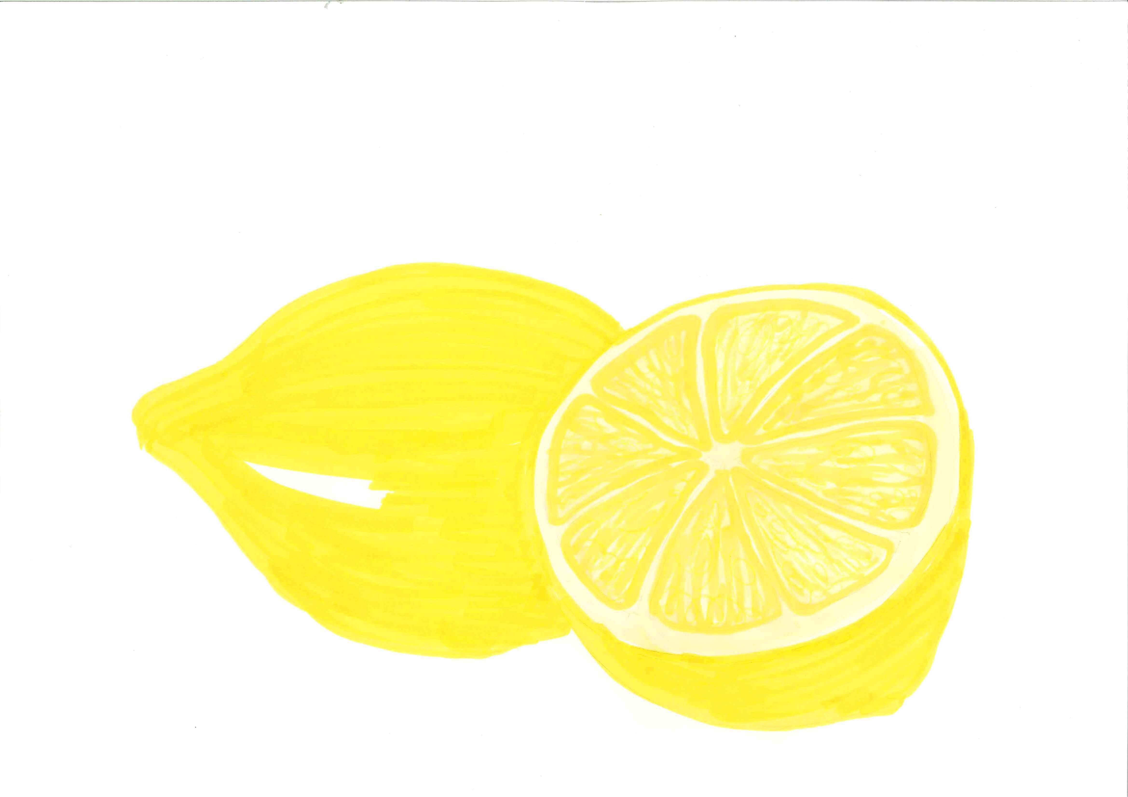Lemon Clipart Free Clip Art Images