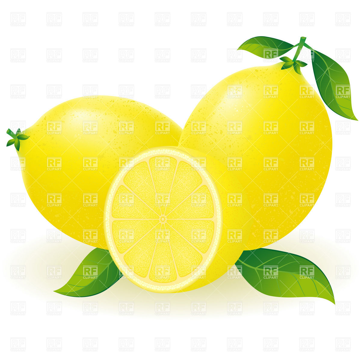 Lemon With Segment Download Royalty Free Vector Clipart Eps