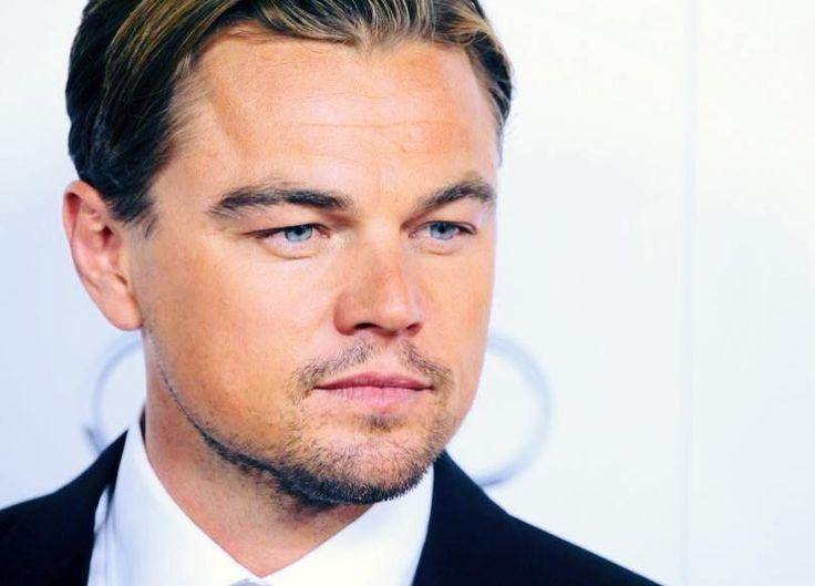 Tag Image, Google Search, Pictures, Leonardo Dicaprio, Photos, Clip Art