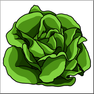 Clip Art: Lettuce Color I abcteach hdclipartall.com - preview 1