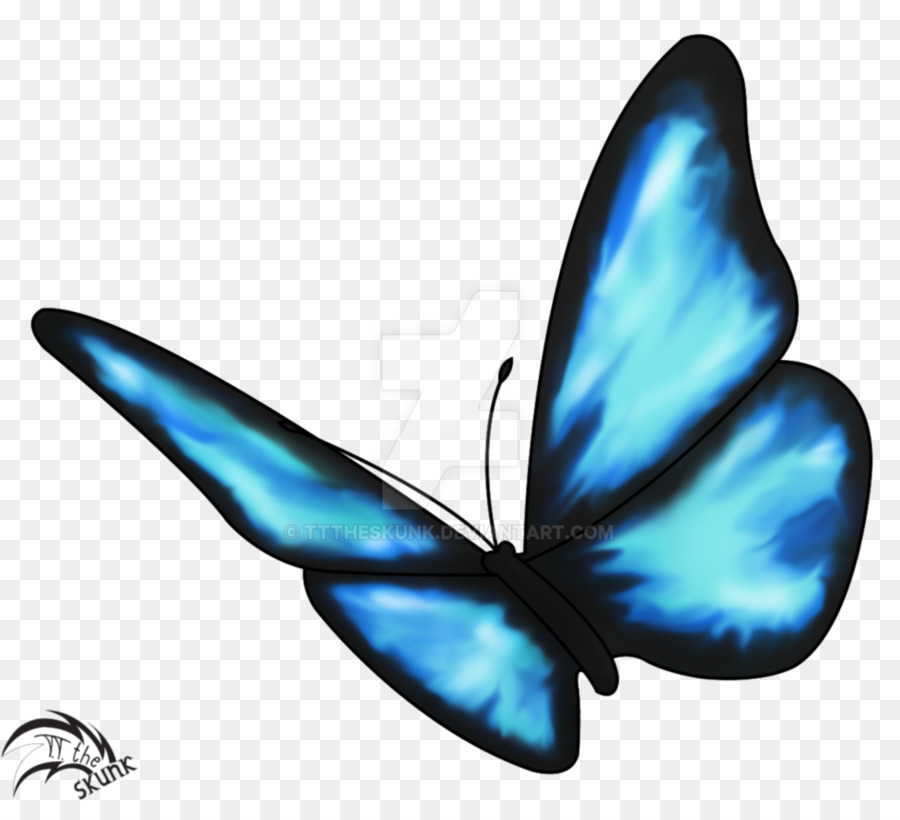 Life Is Strange Butterfly effect Drawing Insect - blue butterfly