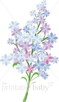 Lilac Bloom Clip Art