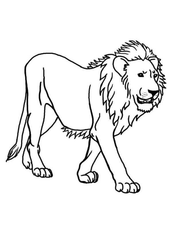 Lion Head - Lion Clipart Black And White