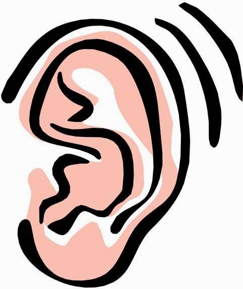 Listener Clipart Ear Clip Art 14 Jpg