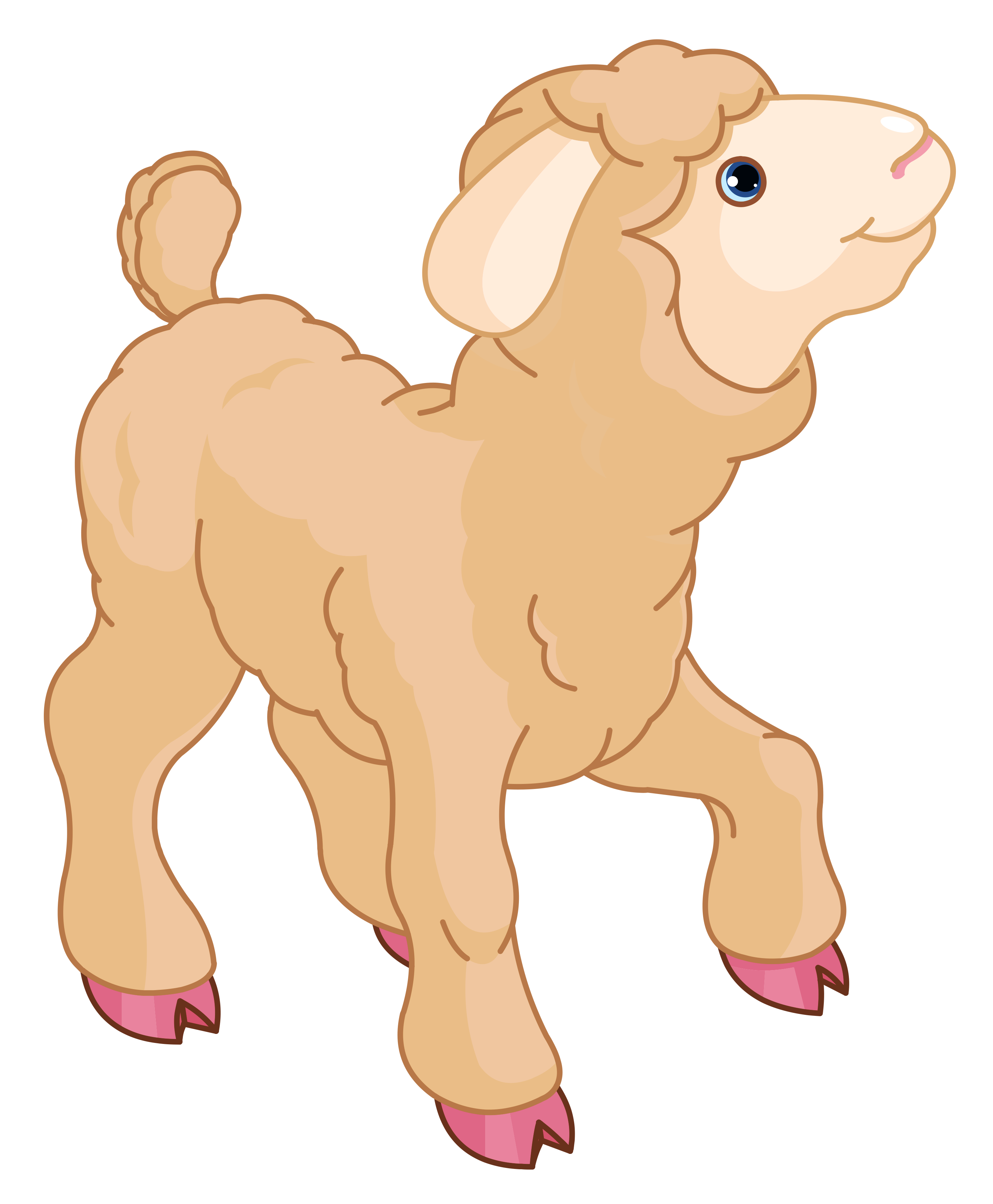 Little lamb clipart clipart kid