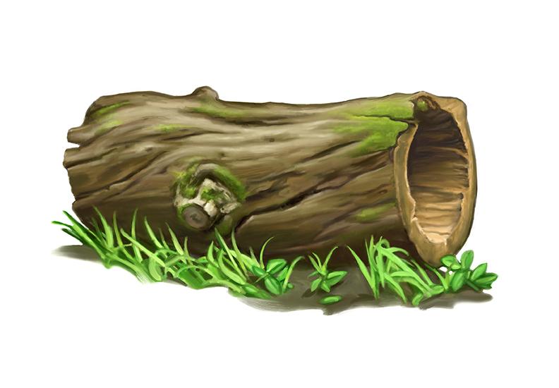 Log clip art clipart. 1000 images about Classroom .