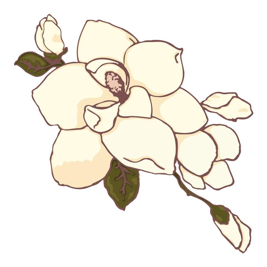 Magnolia Clipart #16555