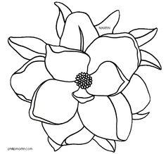 Magnolia clipart - ClipartFest