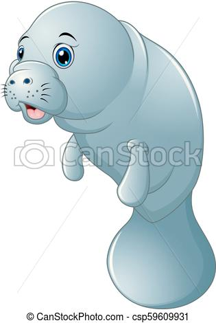 Cute cartoon manatee on white background - csp59609931