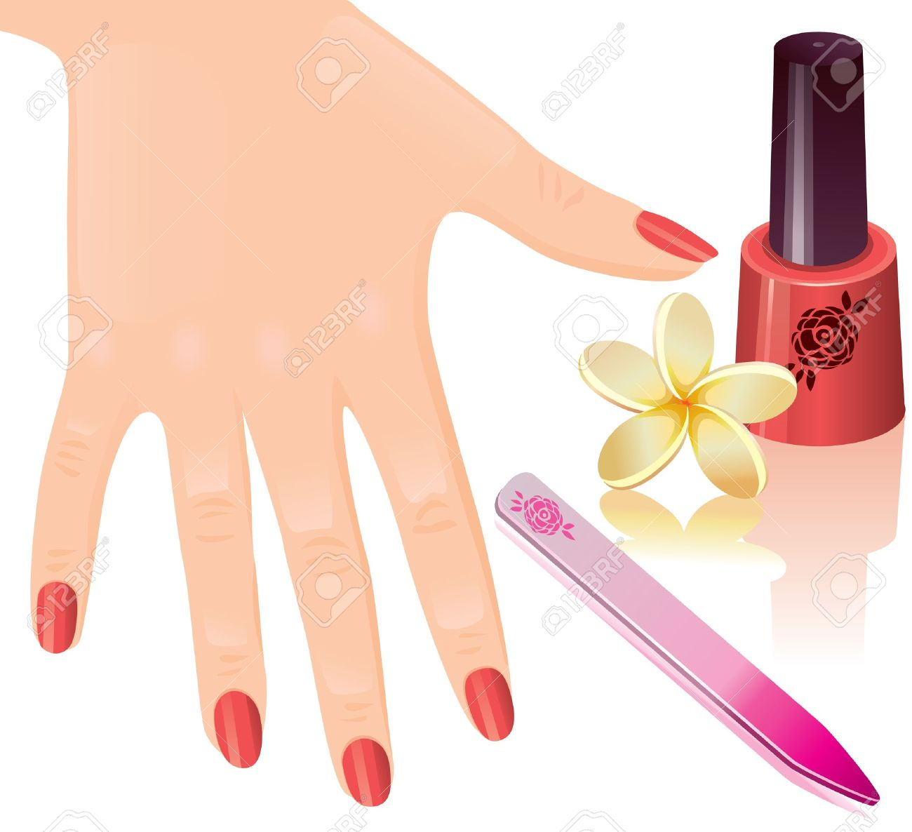 manicure: The beautiful female .
