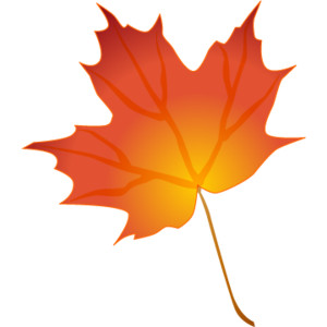 maple leaf clip art » images .