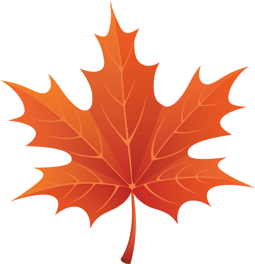 Maple Leaves Clip Art. d9673a5b4537a033f8b6d297d60bcb .
