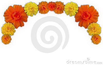 ... marigold flower clip art ...