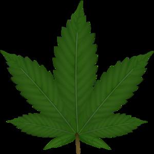 Cannabis Leaf Clip Art - Marijuana Clipart