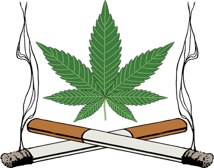 Marijuana clipart tobacco leaf #9