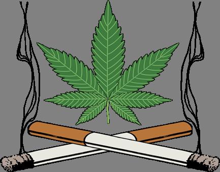 Marijuana clipart tobacco lea - Marijuana Clipart