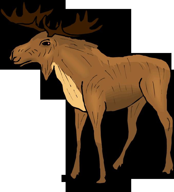 Moose Clip Art
