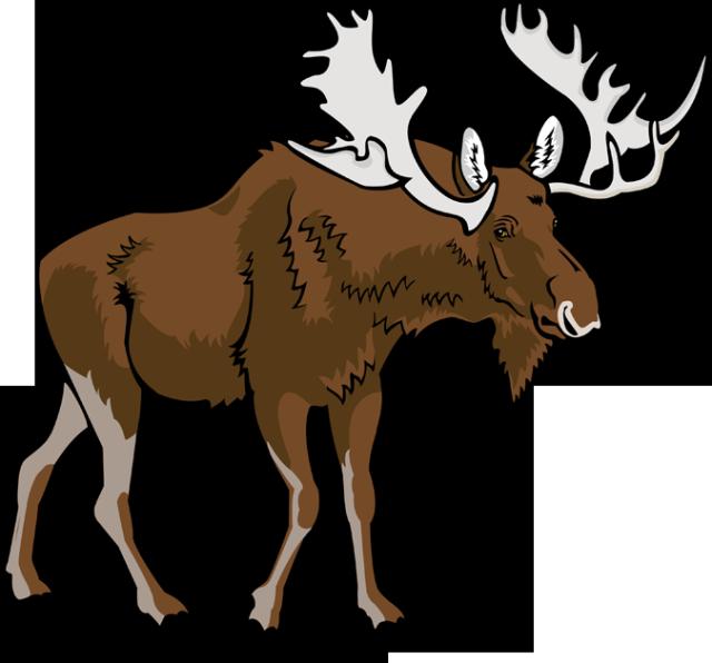 Moose clip art vector moose 6 graphics image 2