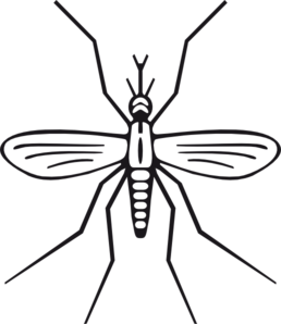 Mosquito Clip Art