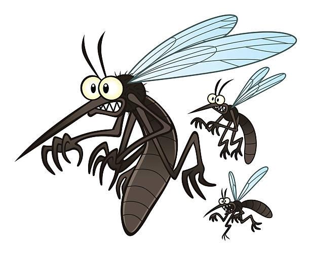 mosquitoes vector art illustration