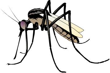No More Mosquito Clipart #1