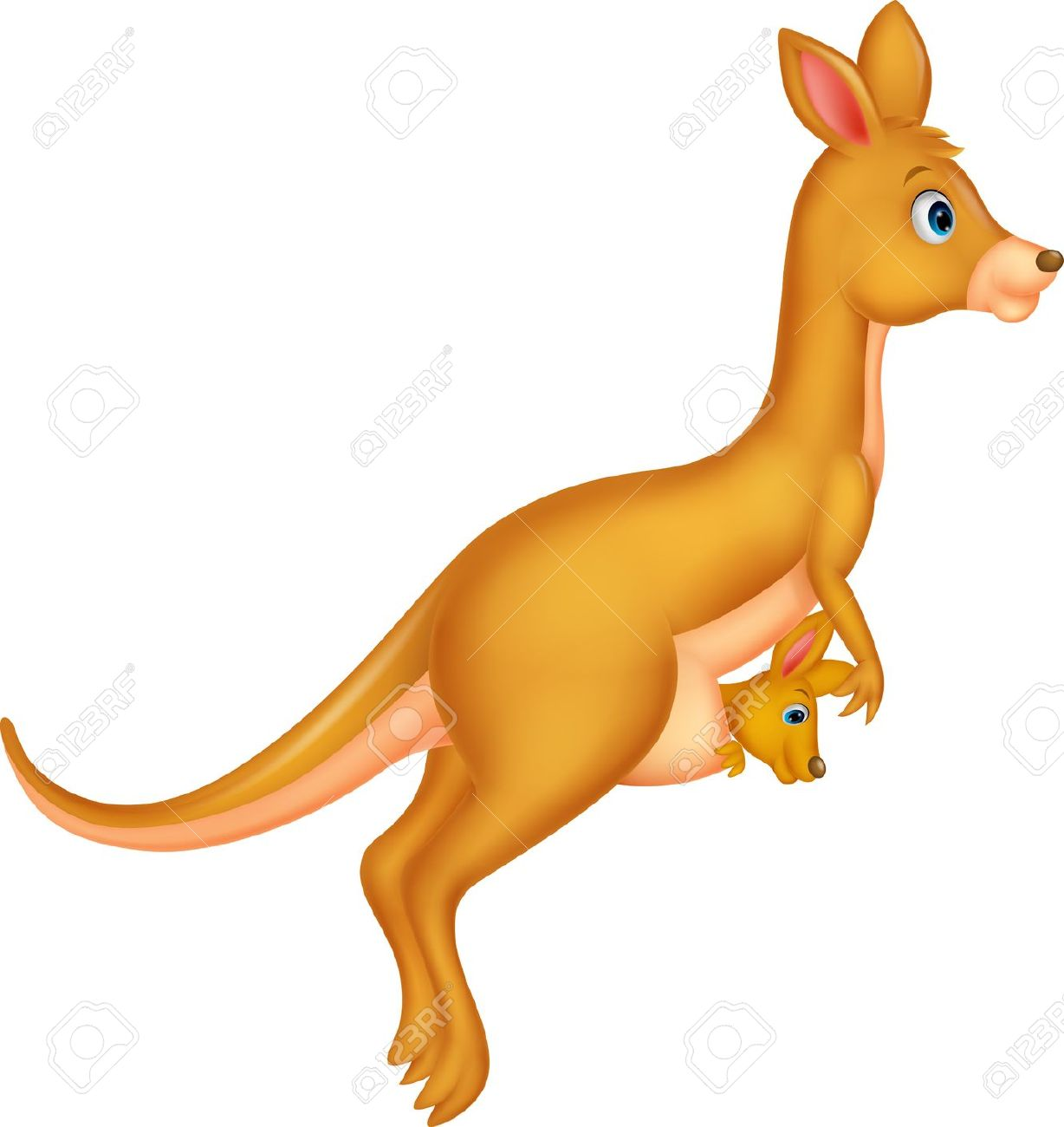 Mother and baby kangaroo .