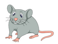 mouse with long tail. Size: 43 Kb
