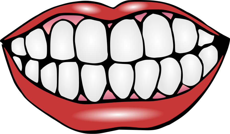 Mouth and Teeth Clipart