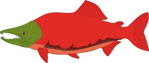 Native salmon clip art free vector in open office drawing svg
