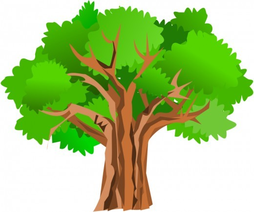 Oak Tree Clip Art - Getbellhop