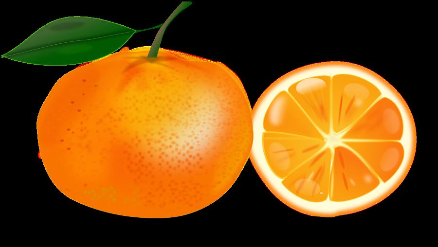 Orange Free Clipart