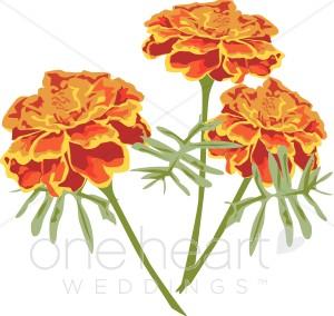Orange Marigolds Clipart