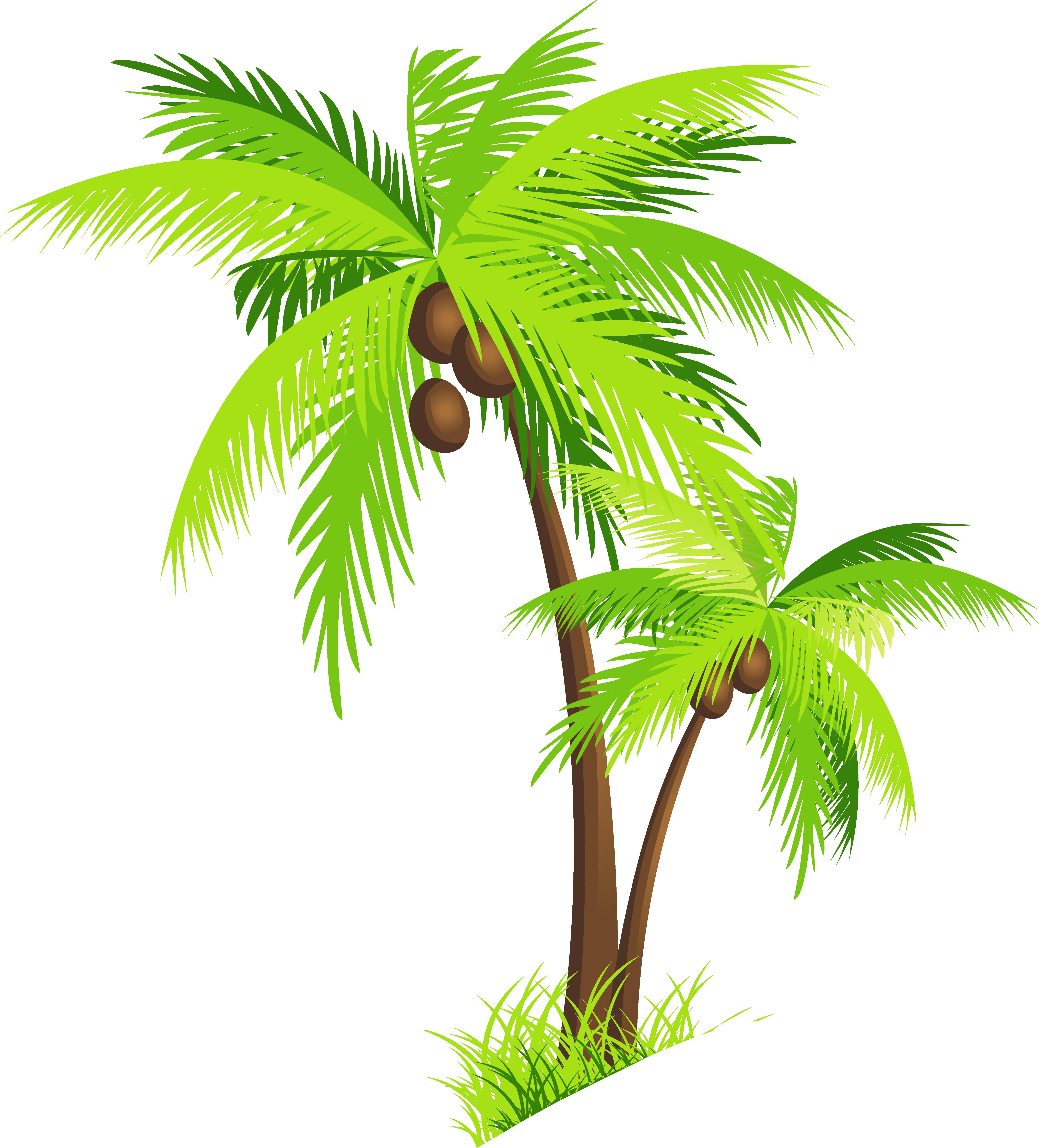 Palm Clip Art