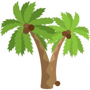 Palm-tree-clipart-4