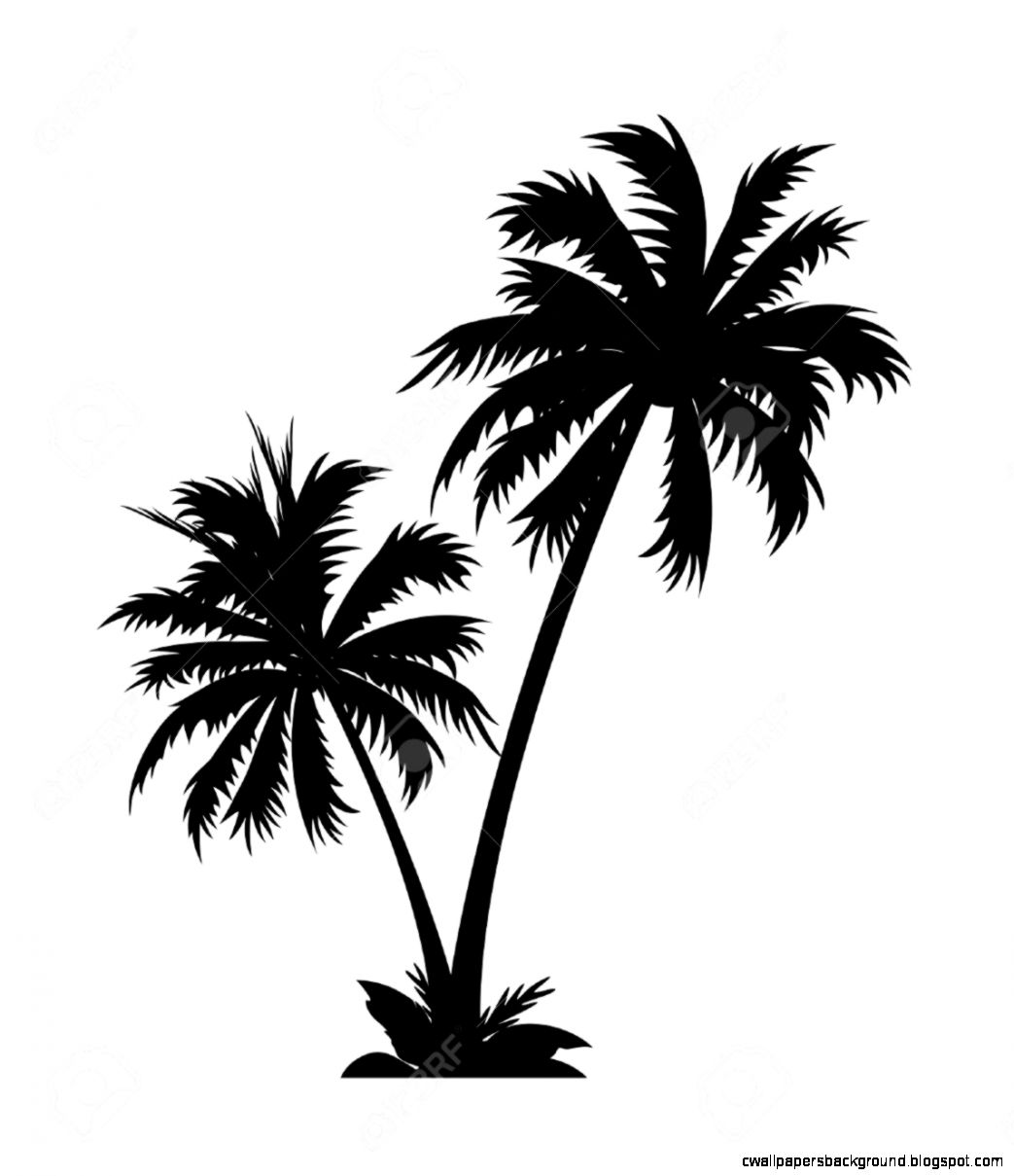 Palm tree clipart black and white clipartall