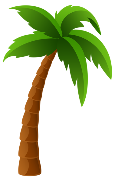 Palm tree gallery trees clipart 2