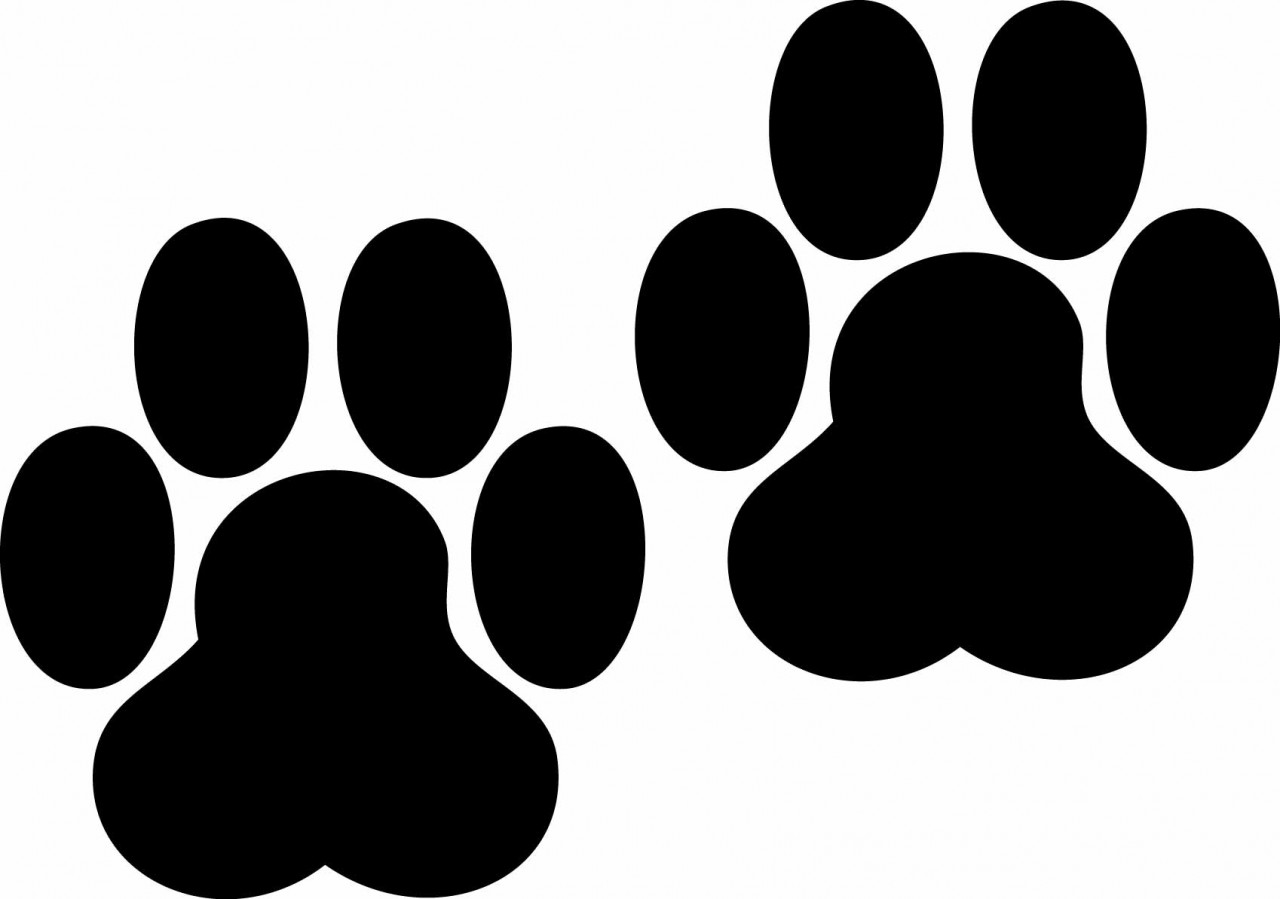 Bobcat Paw Print Clip Art - Clipart library