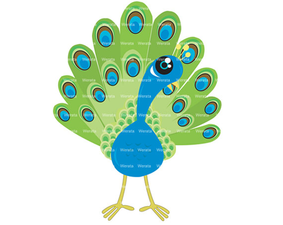 peacock clip art digital clipart - Peacock Digital Clip Art - blue/green Peacock clip art - Personal and Commercial Use