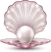 pearl shell; string pearls ...