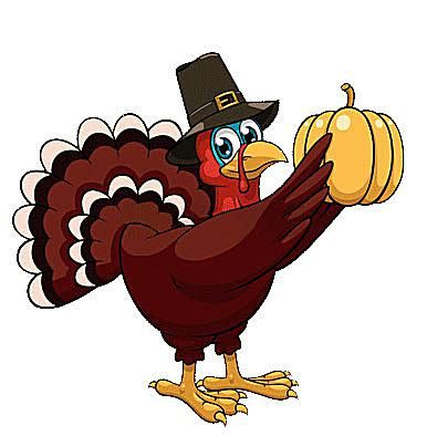 Picture of a turkey holding a pumpkin