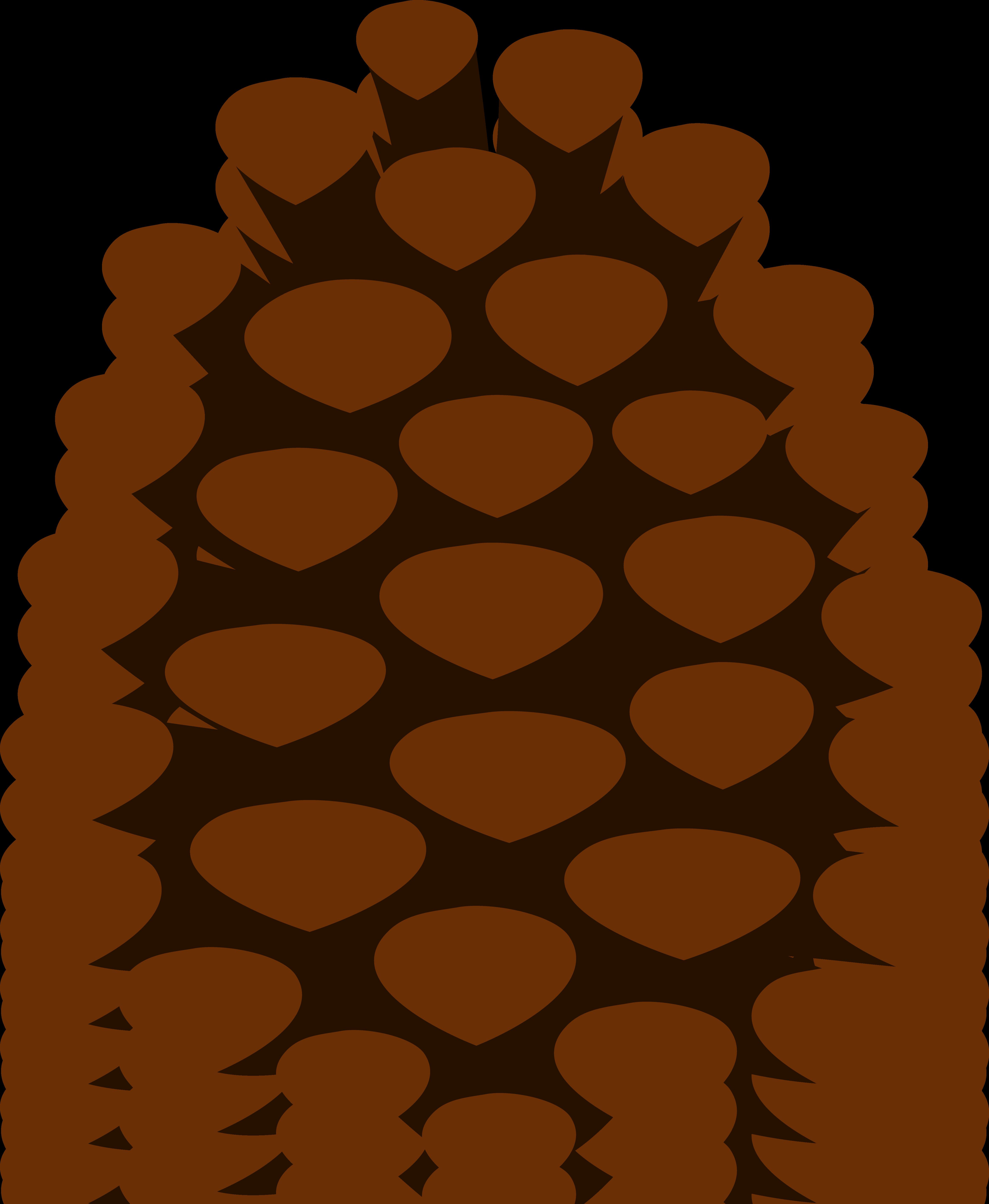 pine clipart